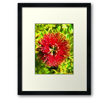 My Surreal Christmas Flower Framed Print