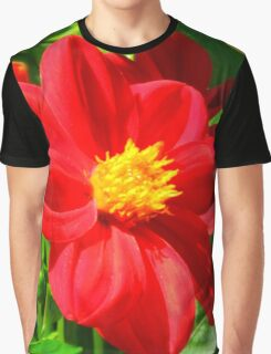 Flowers – 3 Graphic T-Shirt