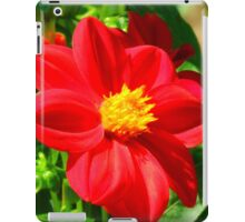 Flowers – 3 iPad Case/Skin