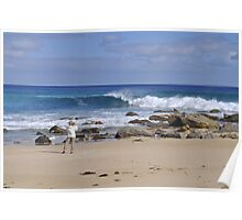 Greenly Beach, West Coast of South Australia Poster
