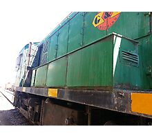 Train no.517 Photographic Print