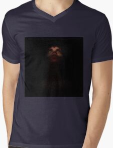 A perfect place to hide Mens V-Neck T-Shirt