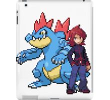 Silver And Feraligatr iPad Case/Skin