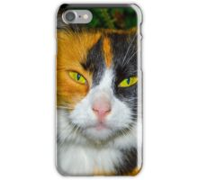 Red-black-and-white cat iPhone Case/Skin