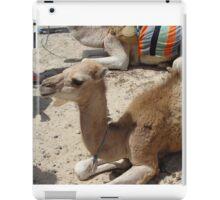 Camel Junior iPad Case/Skin