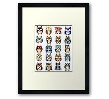 19 Owls and 1 Cat Framed Print