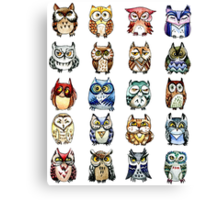 19 Owls and 1 Cat Canvas Print