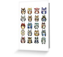 19 Owls and 1 Cat Greeting Card