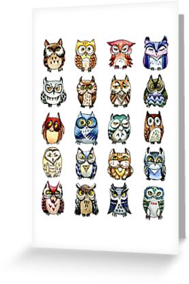 19 Owls and 1 Cat by Redilion