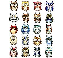 19 Owls and 1 Cat Photographic Print