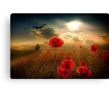 Royal Air Force Tribute Canvas Print