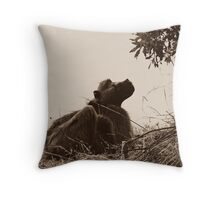 Monkey- Zambia Throw Pillow