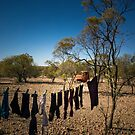 Quick Dry Washing at Lightning Ridge by Clare Colins