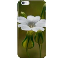 tiny white flower iPhone Case/Skin