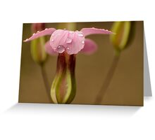 pink raindrops Greeting Card