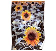 Sunflowers in the Snow Poster