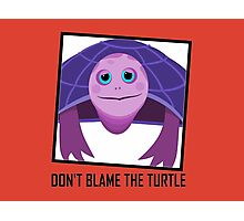 DON'T BLAME THE TURTLE Photographic Print