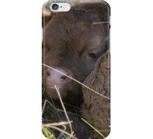 Newborn Naps iPhone Case/Skin