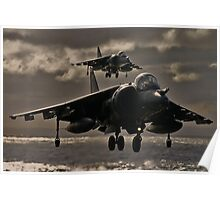 Hovering Harrier Poster