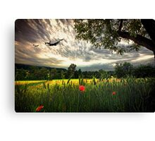 BBMF Summer Tour Canvas Print