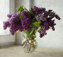 Bouquet of lilacs by JBlaminsky