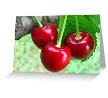 Ukrainian Cherries Greeting Card