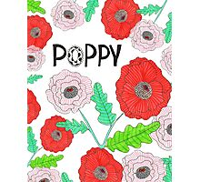 POPPIES - RED POPPY FLOWERS Photographic Print
