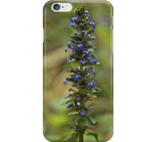 Bugleherb - Burntollet Woods iPhone Case/Skin