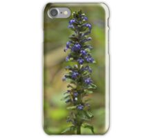 Bugleherb - Burntollet Woods iPhone Case/Skin