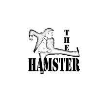 The Hamster! by HowHardCanItBe