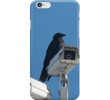Security Crow iPhone Case/Skin