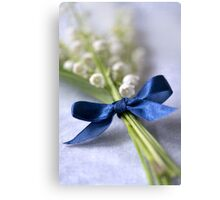 Blue silk ribbon Canvas Print