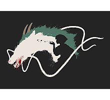 Spirited Away: Haku Photographic Print