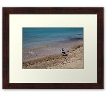 Summer at the Beach Framed Print