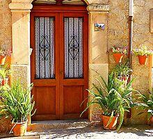 A Door With Ferns by Fara