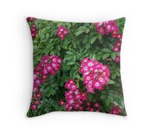50 Throw Pillow