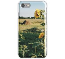 Bright Sunflowers in the Field iPhone Case/Skin
