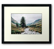 Wild Valley - Lake District Framed Print