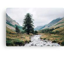 Wild Valley - Lake District Canvas Print