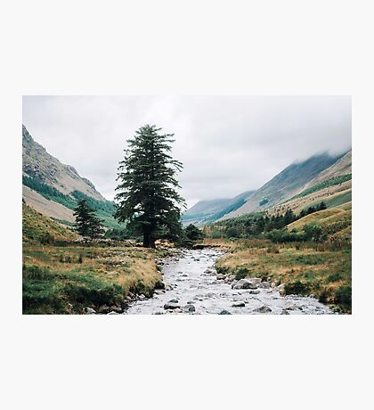 Wild Valley - Lake District Photographic Print