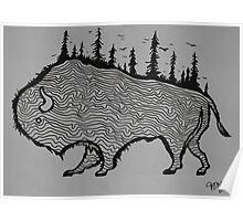 Explore Buffalo Poster