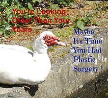 Plastic Surgery Muscovy Duck by Jollyrobin