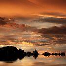 Sunset Pond Reflections by Jessica Jenney