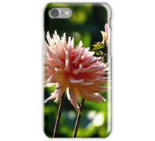 As Nature Stands Still iPhone Case/Skin