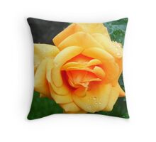 Yellow Peach Rose Throw Pillow