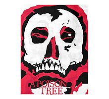 A Poison Tree Photographic Print