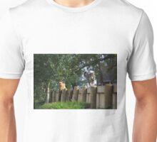 Border dispute Unisex T-Shirt