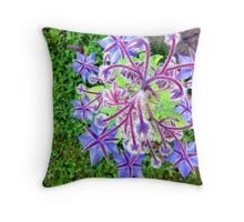 Bourrache officinale  Throw Pillow