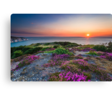 Headon Warren Sunset Canvas Print