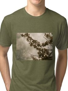 Faded Blooms Tri-blend T-Shirt
